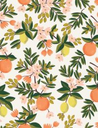 primavera-citrus-floral-in-cream-by-rifle-paper-co